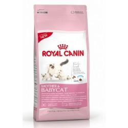 Royal Canin Mother & Babycat til drægtige og diegivende katte samt deres killinger fra 1-4 måneder