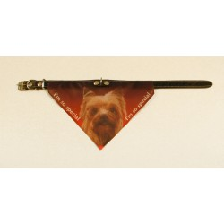 Bandana halsbånd med motiv af Yorkshire Terrier.